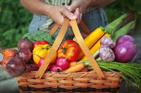 Fare l'orto allunga la vita (e la rende più felice) 4