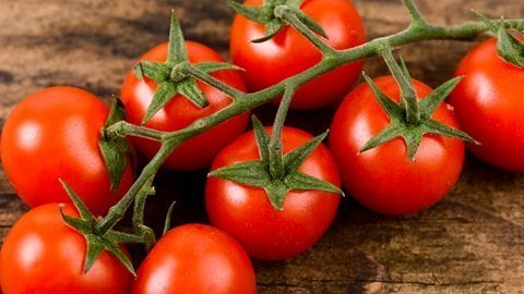 Come coltivare i pomodori nell'orto 1