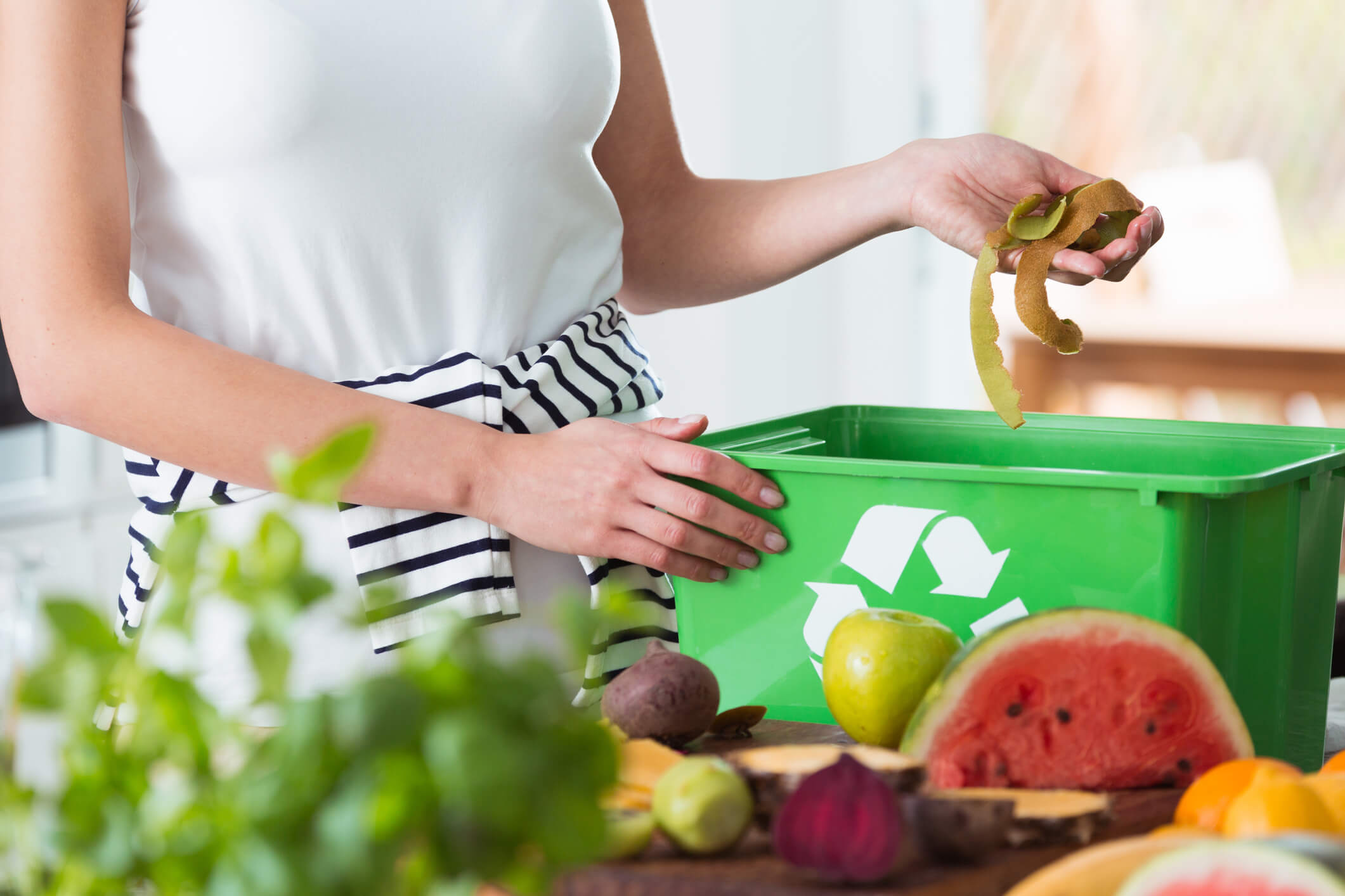 Il compostaggio domestico funziona anche in inverno? 1