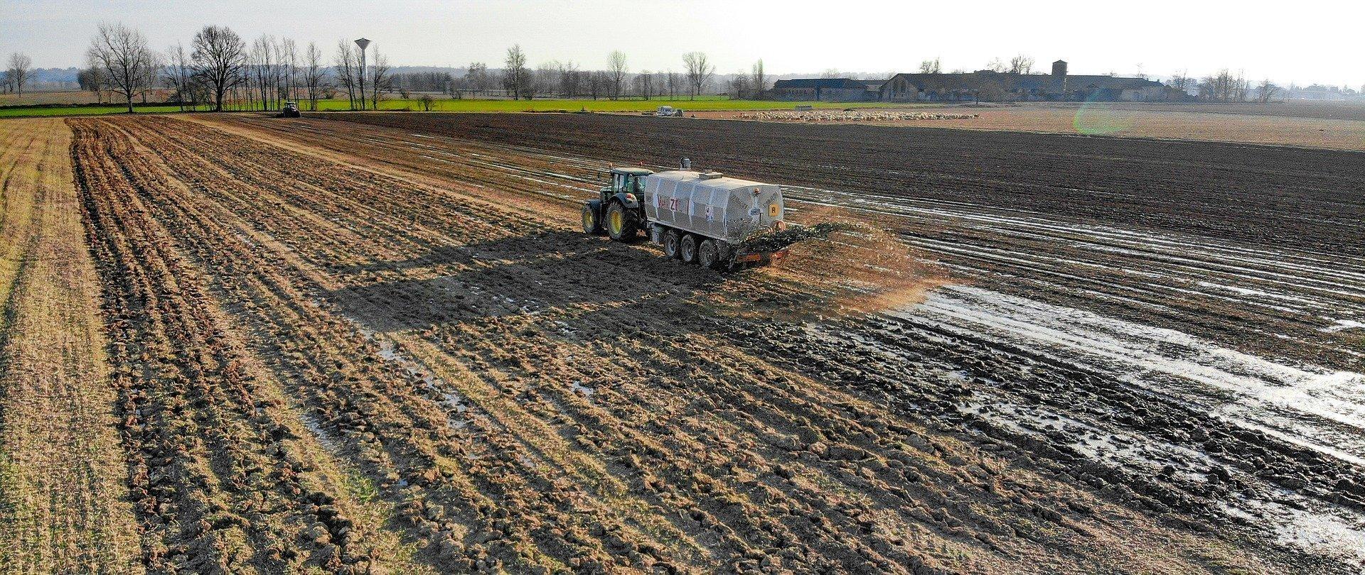 Come concimare l'orto in modo naturale