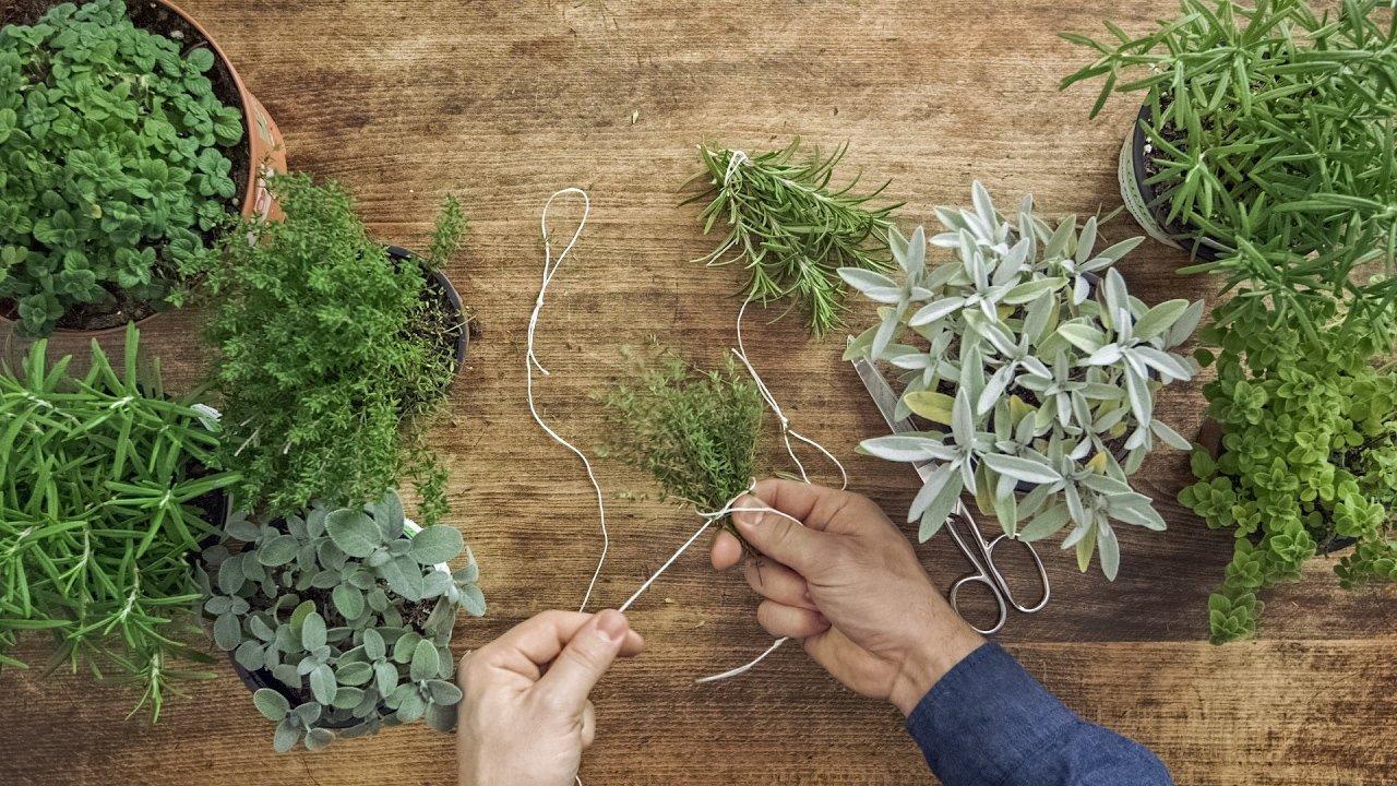 Come far essiccare le erbe aromatiche