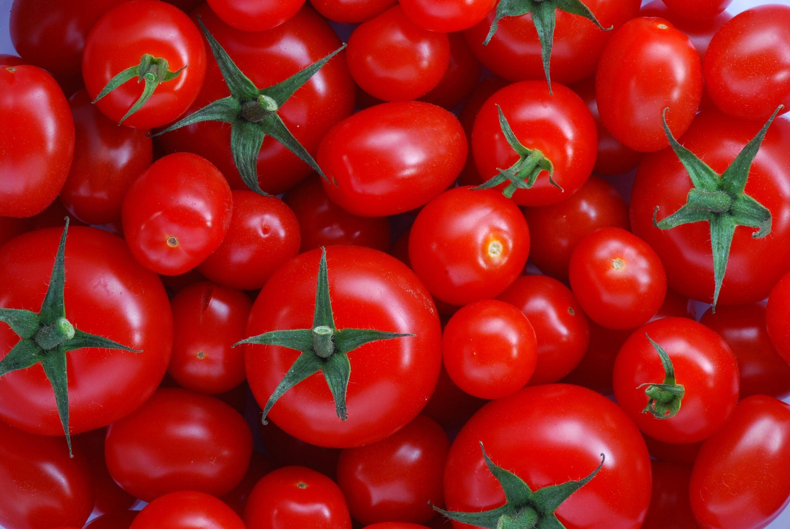 Trucchi per coltivare pomodori belli e buoni