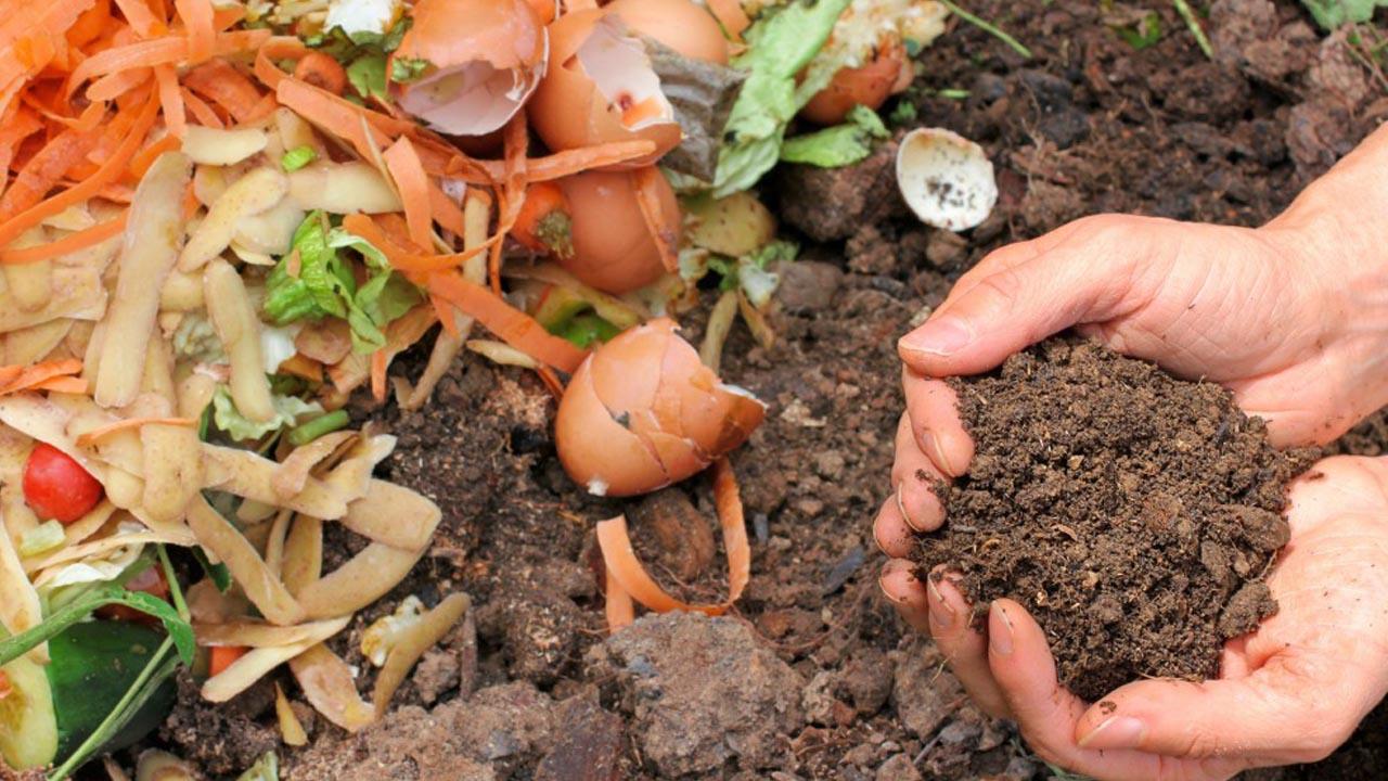Quali rifiuti organici usare per concimare