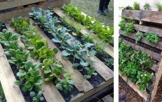 Come costruire un orto col legno riciclato