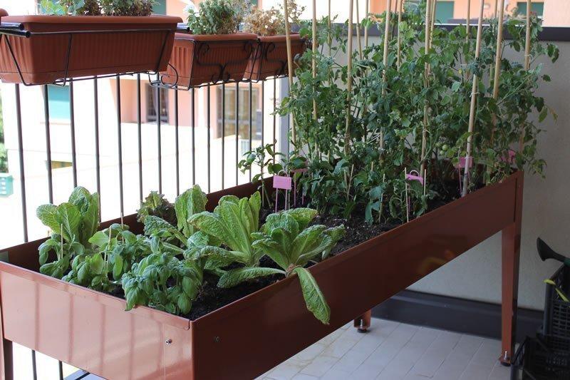 Perché coltivare sul balcone 2