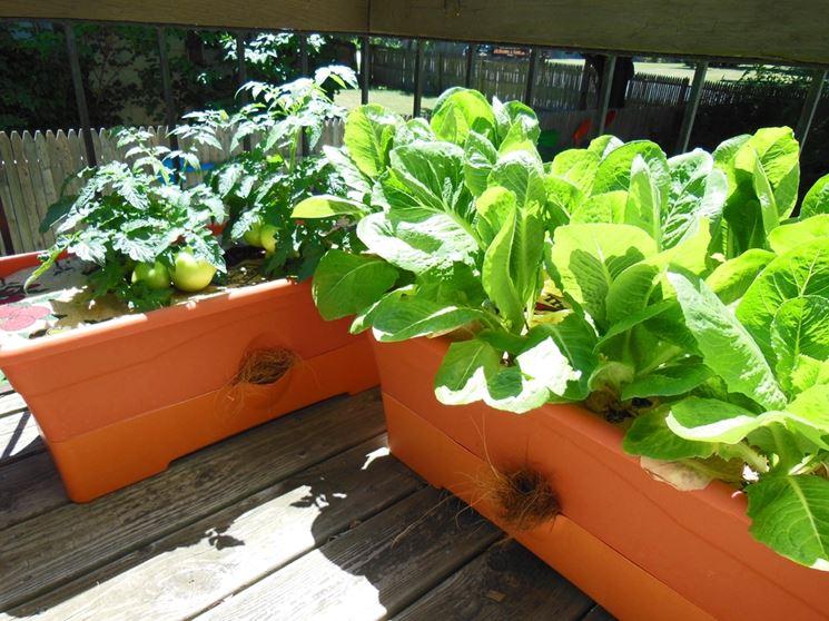 Perché coltivare sul balcone 1