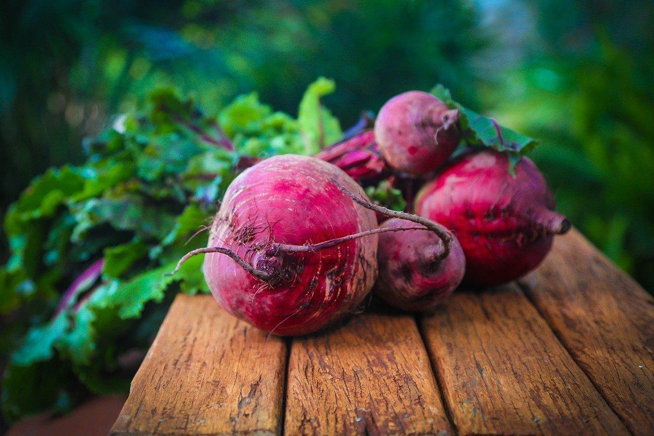 Come si coltivano le barbabietole da orto?