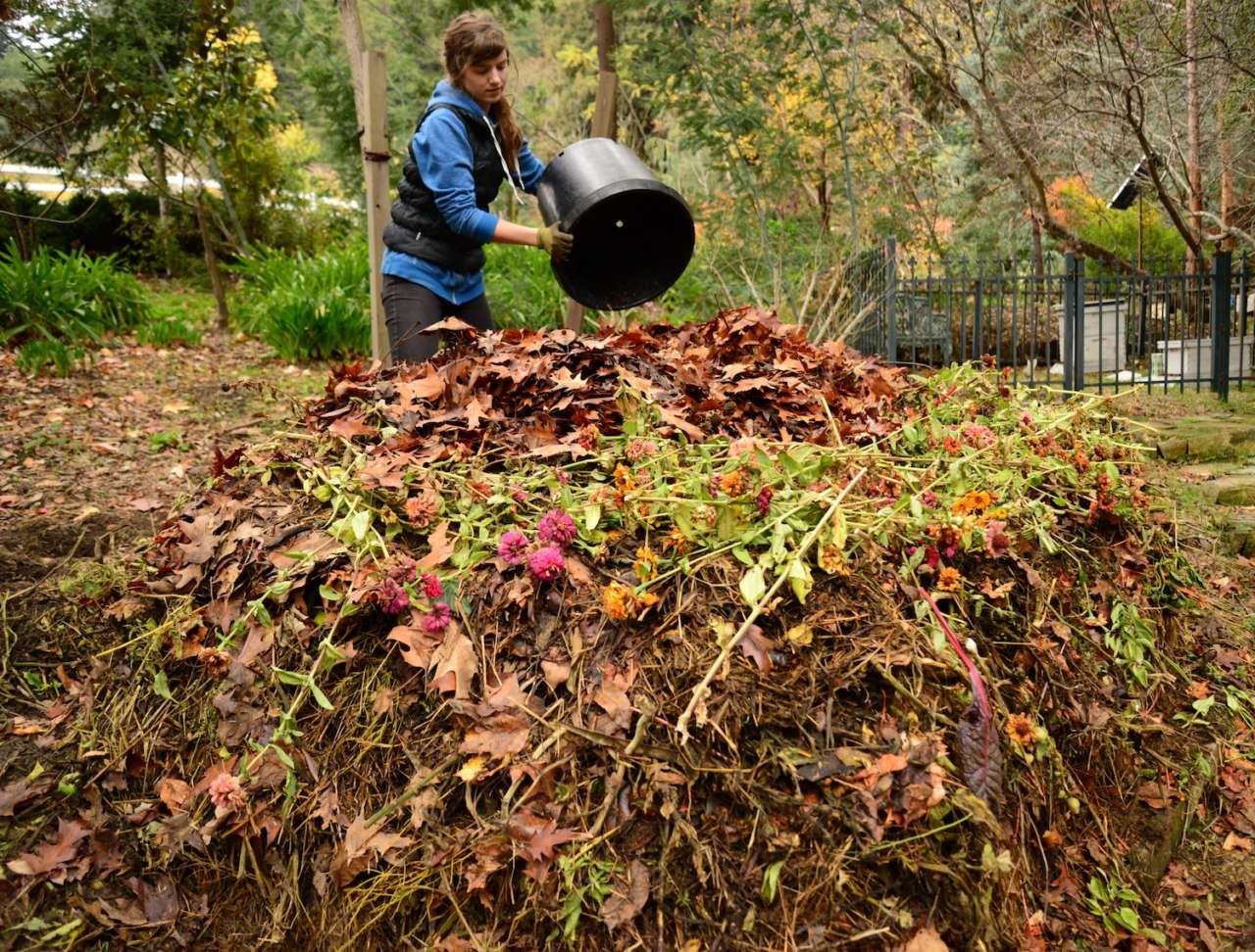 Il compost 4