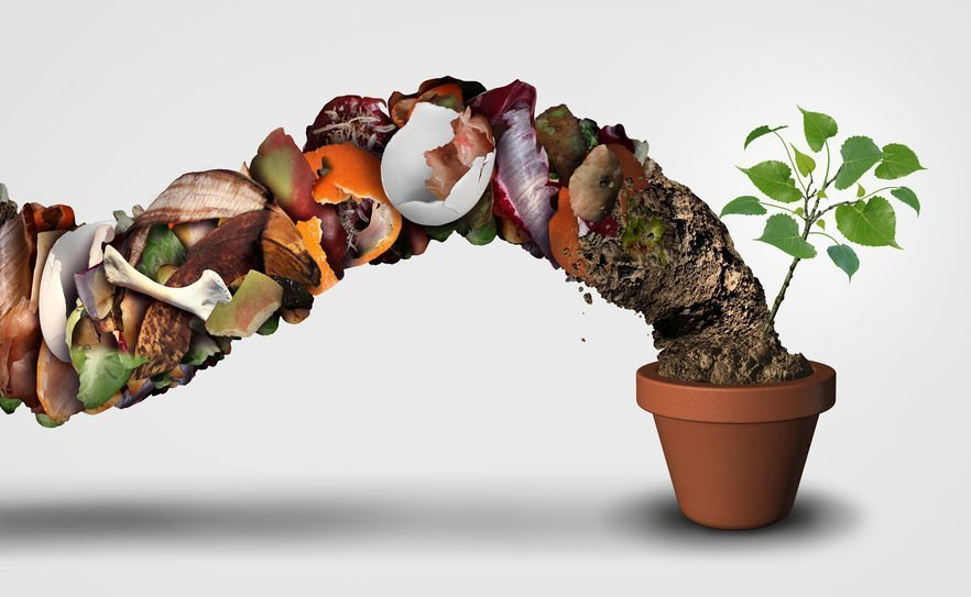 Il compost 1