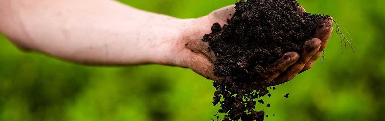 Il compost 7