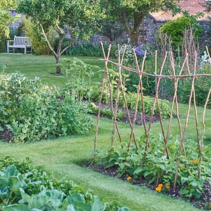 Cosa piantare per l'orto invernale 4