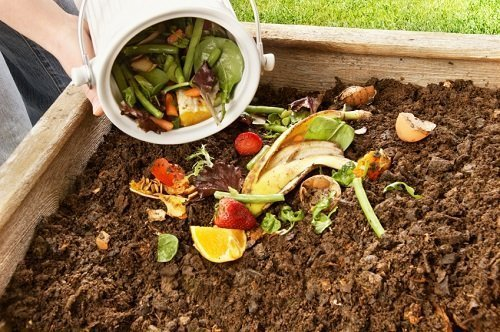 Il compost 5
