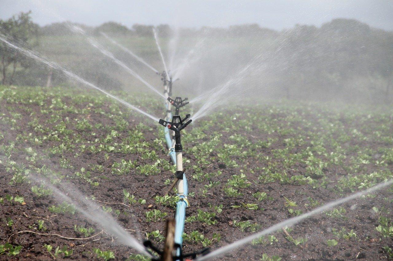 L'irrigazione 5