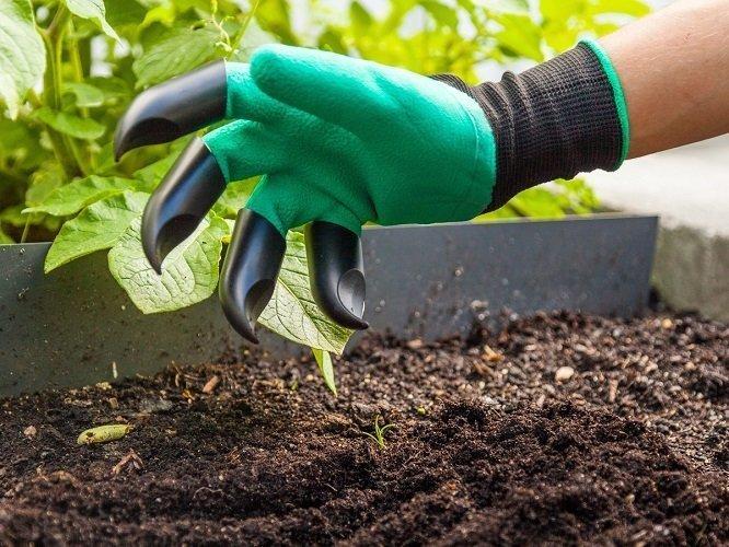 Come scegliere i guanti da giardinaggio