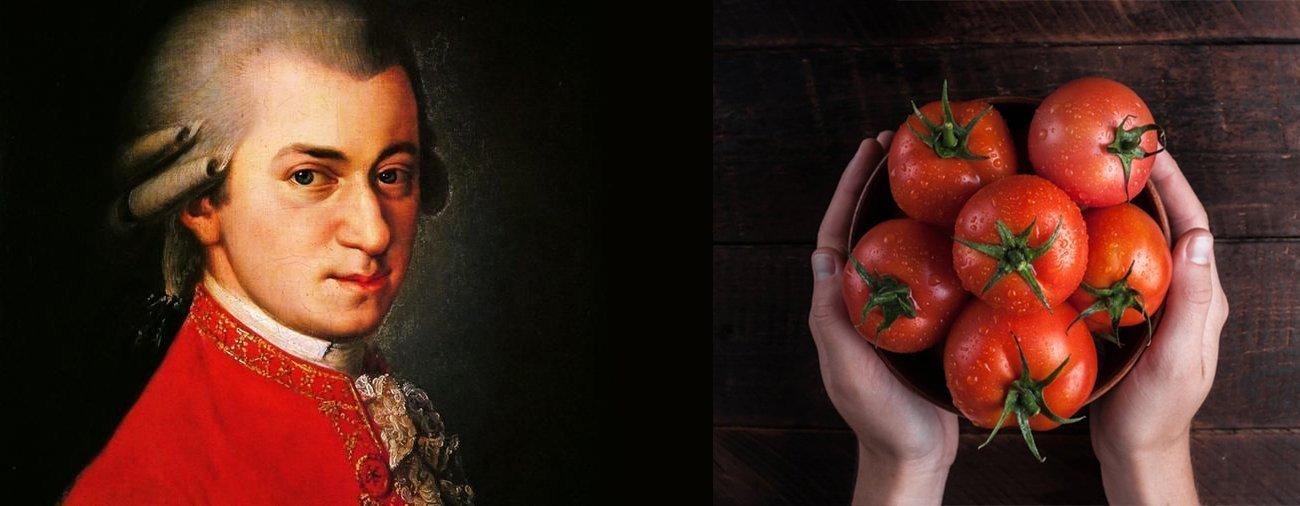 I pomodori crescono meglio con Mozart?