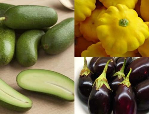 6 ortaggi nani ricchi di gusto e a prova di spazio