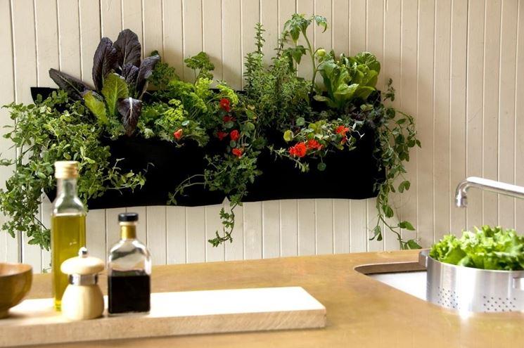 Come creare un orto in casa anche senza balcone